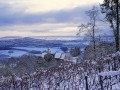 Private guided Christmas tour in the Loire Valley