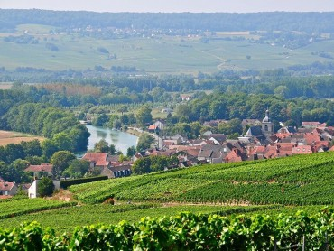 Champagne Day tour, Epernay : Avenue de Champagne & Scenic Route - Lunes, Miercoles y Viernes