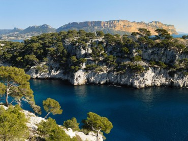 Provence small group Day Tour from Aix en Provence, Cassis calanques, Marseille old port, expert tour guide 7/7