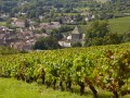 Burgundy Wine Tour + hotel Le Cèdre***** (Beaune) Heritage & Wines
