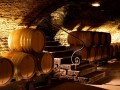 Divine Day Tour - Burgundy Wine Tour - Tasting 10 wines - Monday to Sunday