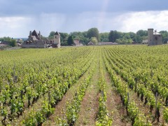 BURGUNDY SHORT BREAKS - 2 DAYS & 1 NIGHT